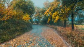 Autumn road. This image is taken near the village of Varbovchets during a photo walk royalty free stock image