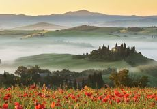 Tuscany hills in spring stock photography
