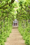 English garden, knebworth house, england. pruned. Image taken of a stately home protected by neatly pruned trees in knebworth house, hertfordshire, england, uk royalty free stock image