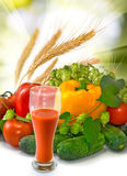 Image of tomato juice and vegetables on sun background Stock Image