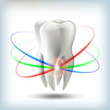 image tooth vector illustration for dentistry vector illustration