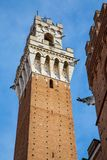 Image of Torre del Mangia in Siena Italy Stock Photo