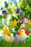 Image of toy chick and Easter eggs in grass close-up Royalty Free Stock Image