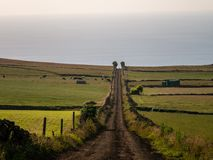 Image of a track across the fields leading to a vanishing point in the image center stock photography