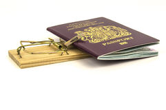 Mouse trap with passport trapped Royalty Free Stock Photo
