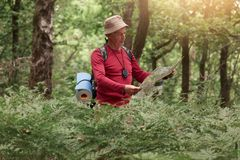 Image of traveler man searching right direction on map, like to travel along nature. Old tourist with backpack standing in amazing stock photography