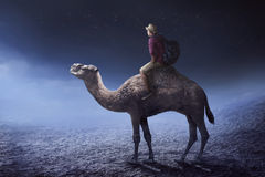 Image of traveler riding camel Stock Image