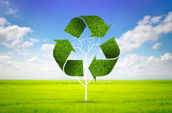 Tree as a recycle symbol Stock Photos