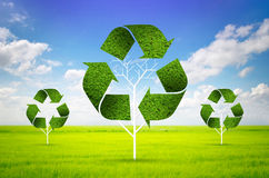 Tree as a recycle symbol Stock Image