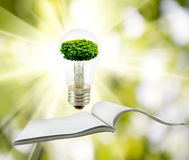 Image of tree in a light bulb on the open magazine closeup Stock Image