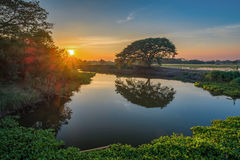 Image of tree water reflections with a beautiful cloudy blue sky. On sunset time at Singburi province, Thailand stock photo