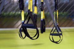 Image of a trx suspension in closeup inside of a gym. Royalty Free Stock Photo