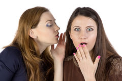 Image of two gossip girls. On white background royalty free stock images