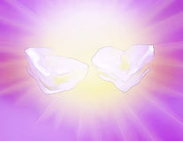 The image two hearts has generated clouds in the lilac  sky. Stock Images