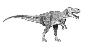 Image of Tyrannosaurus Rex, drawn in ink Stock Photography