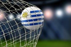 Uruguayan soccerball in net. Image of Uruguayan soccerball in net Stock Image