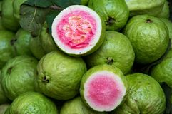 Guava fruit for trade, sell, design royalty free stock images