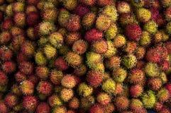 Rambutan fruit for trade, sell, design royalty free stock image