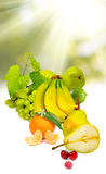Image of various ripe fruits closeup Royalty Free Stock Photos