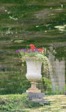 Image of a vase reflected in the water Royalty Free Stock Image