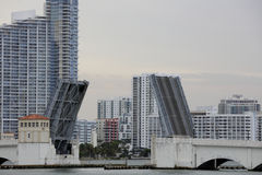 Image of the Venetian Causeway Miami Royalty Free Stock Images