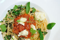 The image is very tasty spaghetti bolognese. Royalty Free Stock Photos
