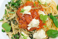 The image is very tasty spaghetti bolognese. Royalty Free Stock Images