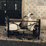 Image of vintage scooter  on old romantic european cobblestone s Royalty Free Stock Images