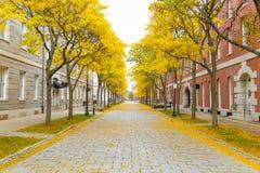 An autumn afternoon in Charlestown Massachusetts royalty free stock photos