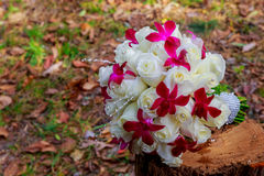Image of wedding bouquet ,    pink and white roses lying on grass Stock Image