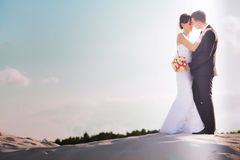 An image of wedding session on the beach Stock Images