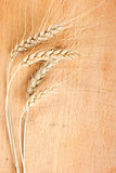 Image of wheat on the table Stock Photos
