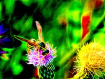 Image of a wild wasp on the flowers of a meadow burdock in neon light. 3d illustration. Image of a wild wasp on the flowers of a meadow burdock in neon light Royalty Free Stock Image