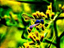 Image of a wild wasp on the flowers of a meadow burdock in neon light. 3d illustration. Image of a wild wasp on the flowers of a meadow burdock in neon light Stock Images