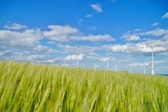View of wind turbine through the green grass. stock photography