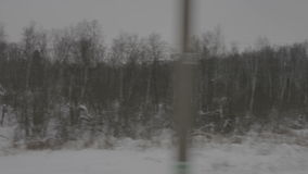 Image of winter forest from moving train stock video footage