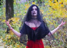 The image of a witch for Halloween. Professional makeup. The image of a witch at the feast of all saints. Halloween Stock Image