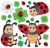 Image With Ladybug Theme 1 Stock Photos