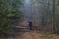 Image of a woman asking if she can follow a path that is obstructed by fallen tree trunks stock photo