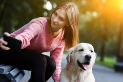 Image of woman on bench making selfie with dog in summer park. Royalty Free Stock Images