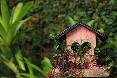 Wooden birds house royalty free stock images