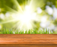Image of wooden boards on grass background close-up Stock Photography