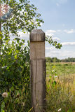 Image wooden pillar at the border of the field Stock Image