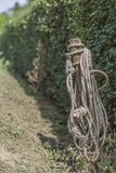 Image of a wooden pole with a rope with green vegetation background royalty free stock photos