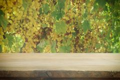 Image of wooden table in front of blurred vineyard landscape. Ready for product display montage. Stock Photo