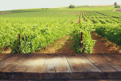 Image of wooden table in front of Vineyard landscape. Vintage filtered royalty free stock photos