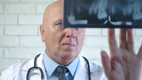 Image with a Worried Dentist Looking to a Dental Radiography.  stock video