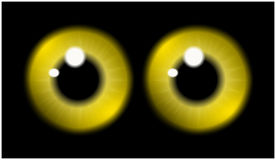 Image of  yellow pupil of the eye, eye ball, iris eye. Realistic vector illustration isolated on black background. Stock Photos