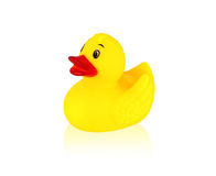 Image of yellow rubber duck Royalty Free Stock Photography