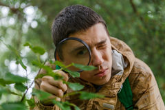 Image of young botanist with magnifying glass. In forest on summer day Royalty Free Stock Images